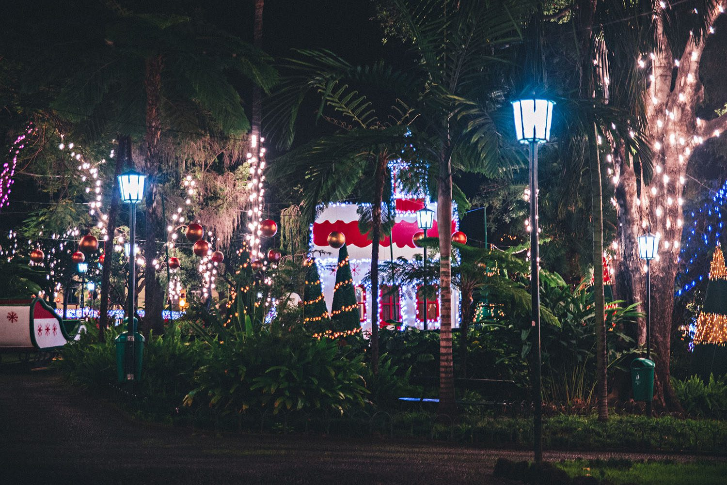 Christmas Decorations in Funchal, Madeira