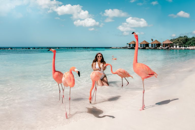 The Ultimate Aruba Travel Guide