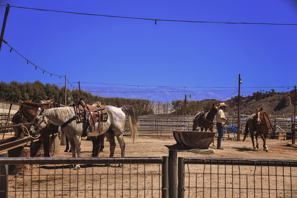 Smoke Tree Stables in Palm Springs